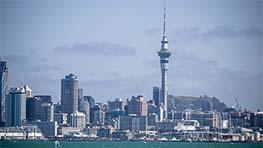 New Zealand Study Visa - Easy2Migrate
